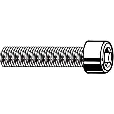 "1/4""-28 x 3/4"", Cylindrical, Socket Head Cap Screw, 18-8, Stainless Steel, Plain Finish, 100PK"