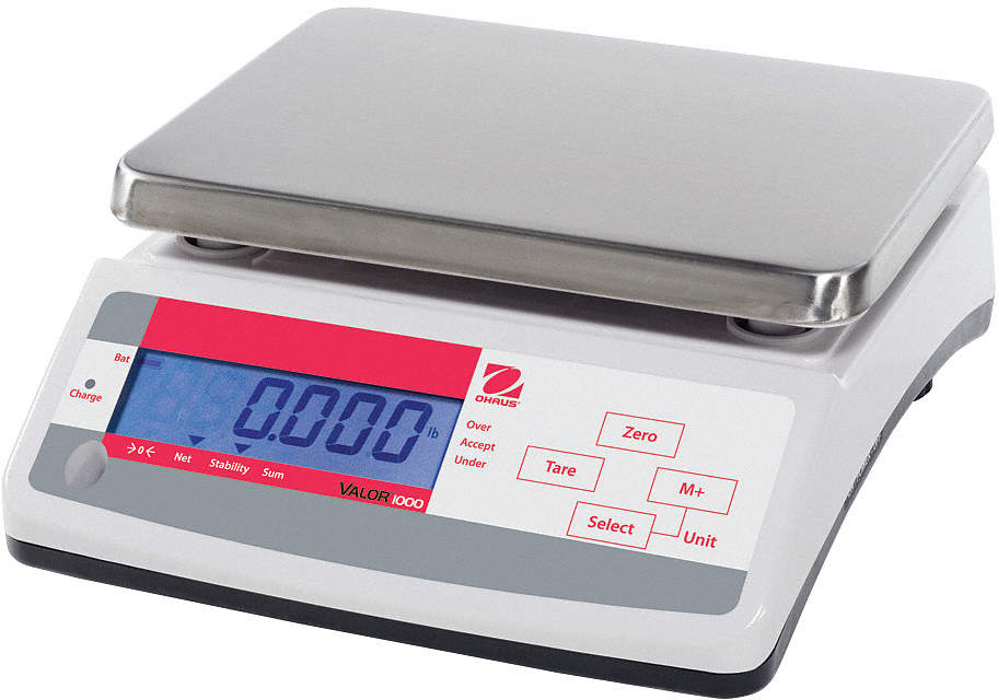 Compact Bench Scale,SS Pltfrm,