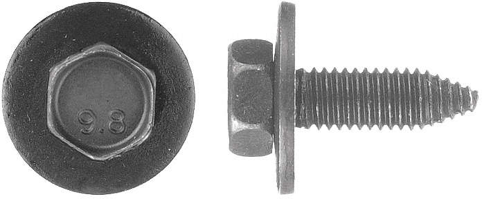 Bolt,Ca Body,1.25mm x 25mm L,